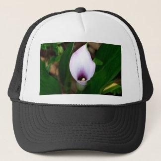 を使っておよび紫色のオランダカイウユリ キャップ
