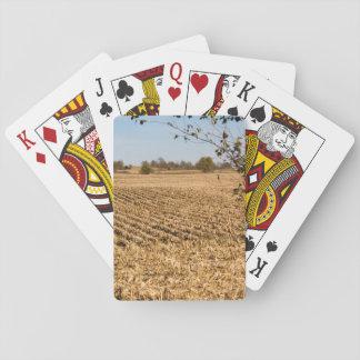 アイオワのとうもろこし畑のパノラマの写真 トランプ