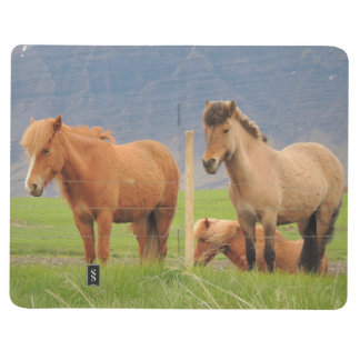 アイスランドの馬および家の写真が付いているノート ポケットジャーナル