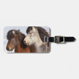 アイスランドの馬のプロフィール、アイスランド ラゲッジタグ