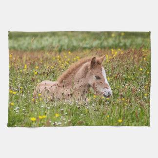 アイスランドの馬の子馬の台所タオル キッチンタオル