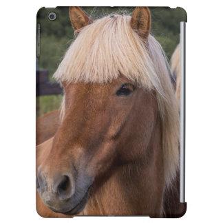アイスランドの馬の閉めて下さい
