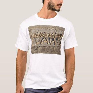 アイダホのポテト Tシャツ