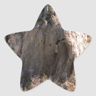 アイダホの石 星シール
