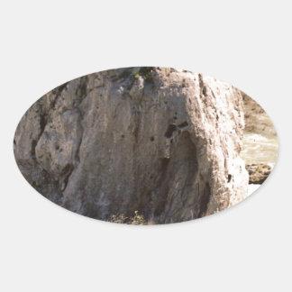 アイダホの石 楕円形シール