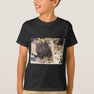 アイダホの石 Tシャツ
