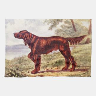 アイリッシュセッターのスポーツのな犬の1900年のイラストレーション キッチンタオル