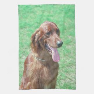 アイリッシュセッター犬の台所タオル キッチンタオル