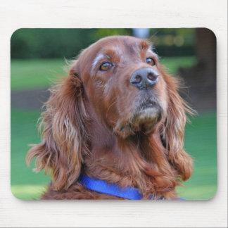 アイリッシュセッター犬のmousepad、ギフトのアイディア マウスパッド