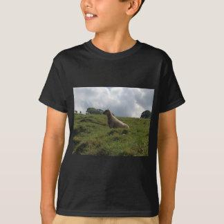 アイルランドのアイルランドのどなるヒツジ Tシャツ