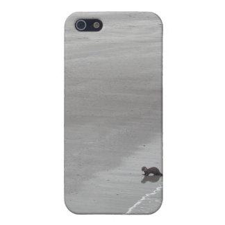 アイルランドのビーチのカワウソ iPhone 5 カバー