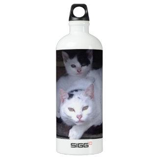 アイルランド猫はアイルランドの雨の日ShelterOnに取ります ウォーターボトル