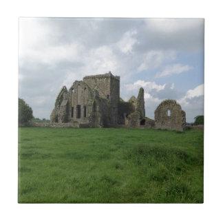 アイルランドHoreの大修道院のアイルランド語はCashelの石を台無しにします タイル