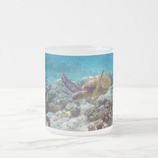 アオウミガメ フロストグラスマグカップ