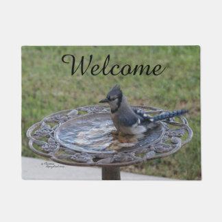アオカケスのかわいい鳥のSpiegelandの歓迎された玄関マット ドアマット