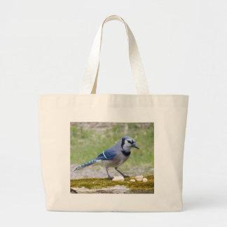アオカケスの美しい鳥 ラージトートバッグ