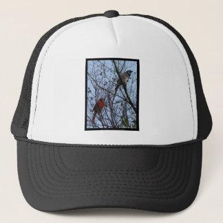 アオカケス歩哨およびリーHiller著(鳥)ショウジョウコウカンチョウ キャップ