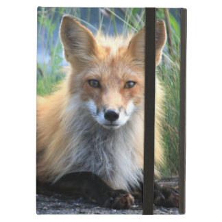 アカギツネの美しい写真のポートレート、ギフト iPad AIRケース