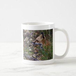 アカギツネ-キツネのプロフィール コーヒーマグカップ
