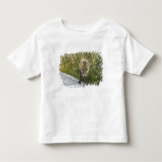 アカギツネ、丸太、野生の花のVulpesのfulva、 トドラーTシャツ