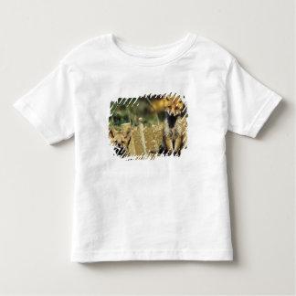 アカギツネ、洞穴で若いVulpesのvulpes トドラーTシャツ