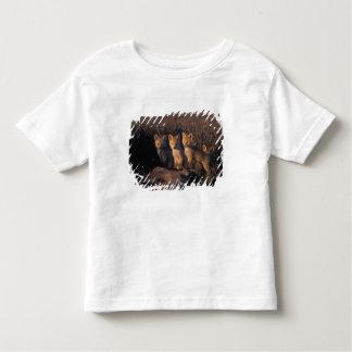 アカギツネ、Vulpesのvulpes、彼等のの外のキット トドラーTシャツ