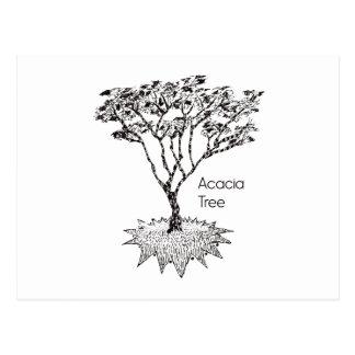 アカシアの木 ポストカード