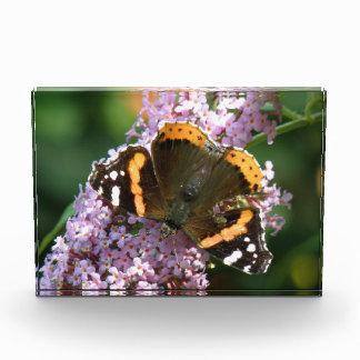 アカタテハチョウ蝶およびBuddleiaの写真のブロック 表彰盾