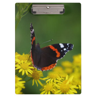 アカタテハチョウ蝶のクリップボード クリップボード