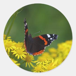 アカタテハチョウ蝶のステッカー ラウンドシール