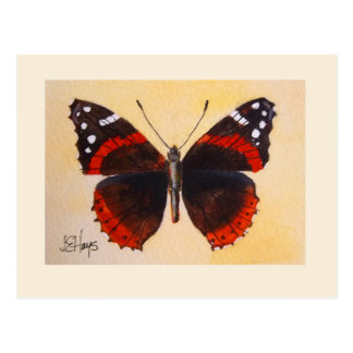 アカタテハチョウ蝶の郵便はがき ポストカード