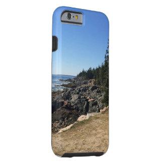 アカディア国立公園、メインの私電話6箱 ケース