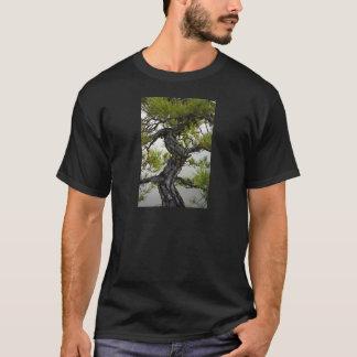 アカマツの盆栽の木 Tシャツ
