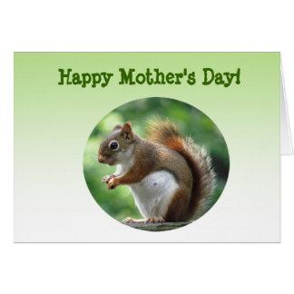 アカリスの母の日 カード