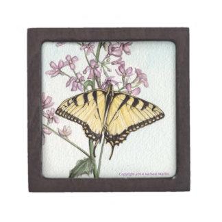 アゲハチョウの蝶 ギフトボックス