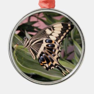 アゲハチョウの蝶 メタルオーナメント