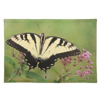 アゲハチョウの蝶 ランチョンマット