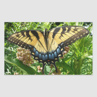 アゲハチョウの蝶ShenandoahのII 長方形シール