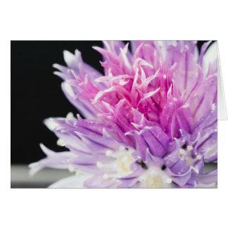 アサツキの花のマクロ カード