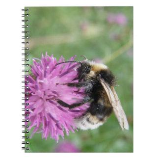 アザミのノートの《昆虫》マルハナバチ ノートブック