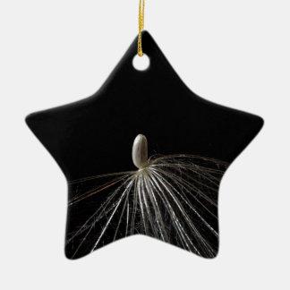 アザミの種のマクロ写真 陶器製星型オーナメント