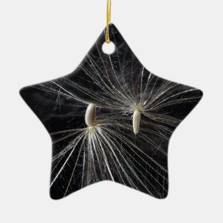 アザミの種 陶器製星型オーナメント