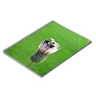 アザミの花ののまわりに ノートブック
