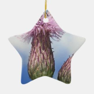 アザミのCirsiumのArvenseのピンクの花の蜂 陶器製星型オーナメント
