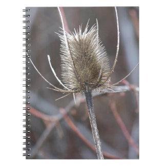 アザミ ノートブック