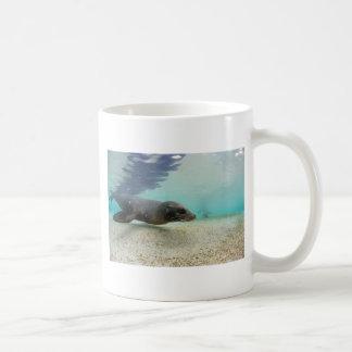アシカの水中楽園の礁湖 コーヒーマグカップ