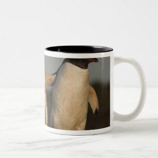 アシカのGentooのペンギンのPygoscelisパプア) ツートーンマグカップ