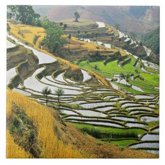 アジアの中国、ユンナンのYuxiの県; 元江 タイル