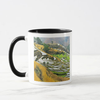 アジアの中国、ユンナンのYuxiの県; 元江 マグカップ