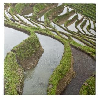 アジアの中国、ユンナン、Yuanyang。 あふれられた米 タイル